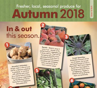 Seasonal Newsletter: Autumn